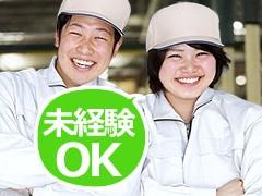 伊勢崎市境上矢島/自動車バッテリーの検査など/土日祝休み