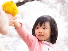 入間市狭山ヶ原字霞野/生活用品のピッキング/短時間○