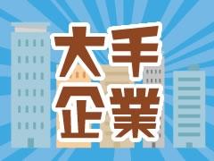 野田市野田/商品の箱詰め/土日祝休み