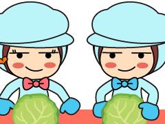 丹波篠山市泉/野菜の目視検査・梱包/週払い可