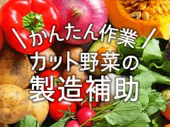 熊本市南区川尻/野菜の洗浄・カットなど/週3~